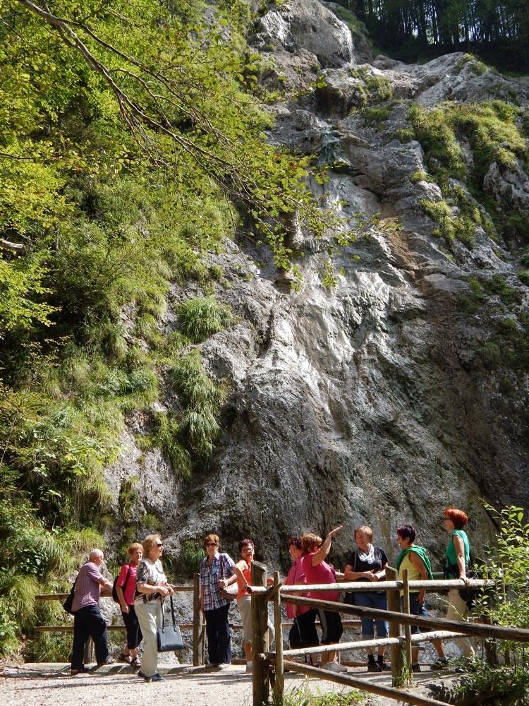 Ogled Logarske doline - Topolščice - Golte