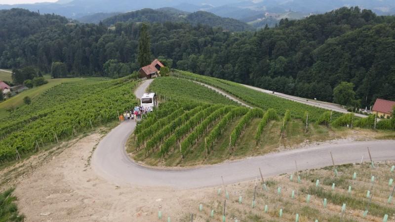 Izlet v osrčje vinogradov in pot v obliki srca